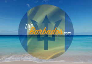 Barbados Blog Barbados Travel Blog In Barbados Life In Barbados Hardings International Real Estate For Sale In Barbados Property For Sale In Barbados Real Estate For Sale